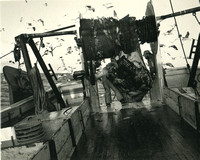 Commercial Fishing in RI 1982-4