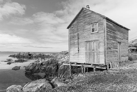 Abandoned Stage, Island Harbor, Fogo I