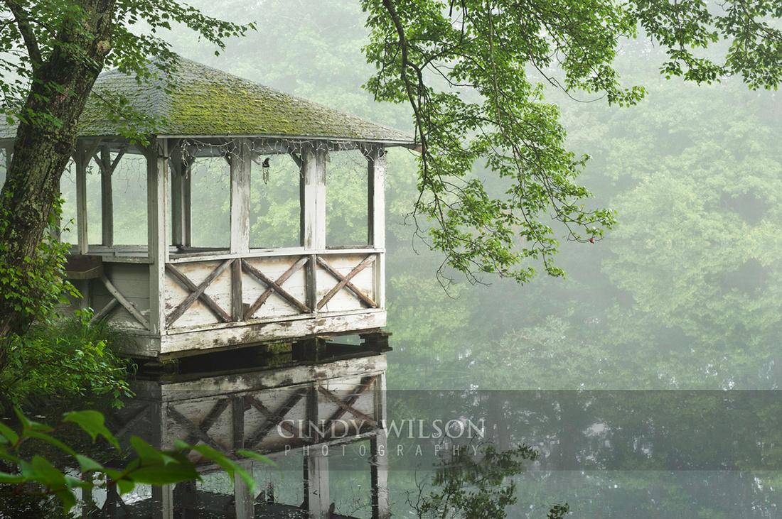 Stillness and Reflection