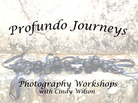 Profundo Journeys Workshops 2009-18